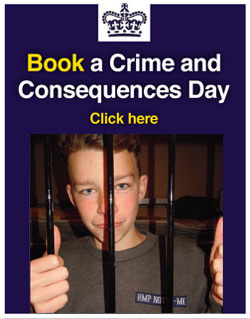 Book a Crime and Consequences day